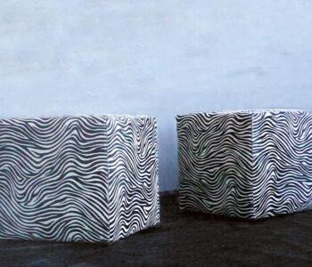 Zebra Product Pic